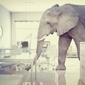 Unified Data: The Elephant in the Room